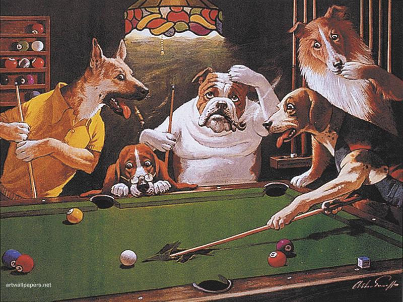 Big Dog Poker